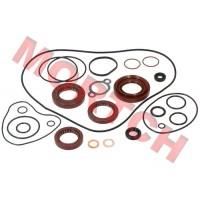 Oil Seal & O-Seal Ring Kit, Engine