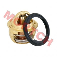 CF250 CH250 Thermostat