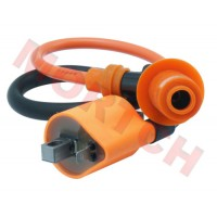 CG/JOG High Performance Coil Ignition